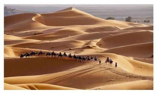 Sahara Desert Morocco Trip