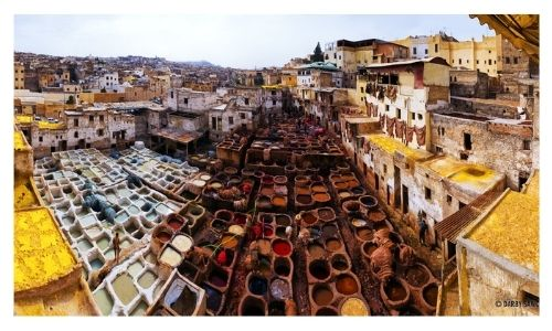 Top Tours Morocco